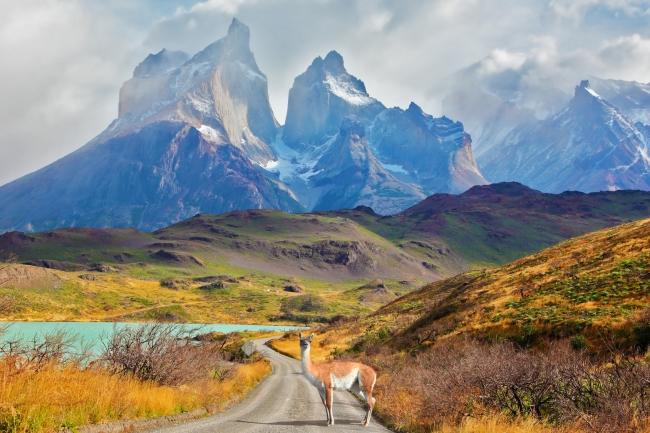Descubriendo los andes patagónicos